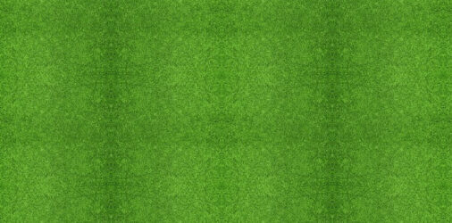 Buy Artificial Grass Image Placeholder